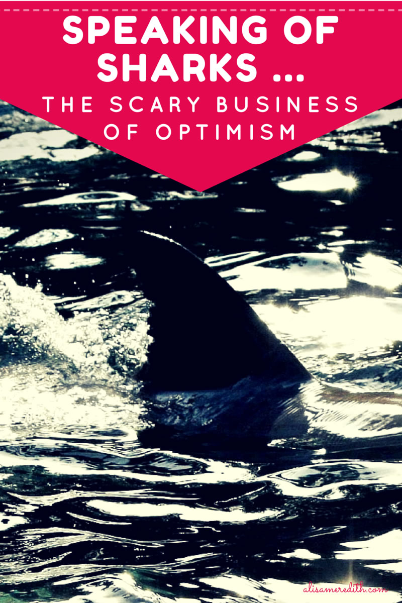 The Scary Business of Optimism https://alisameredith.com/business-optimism/
