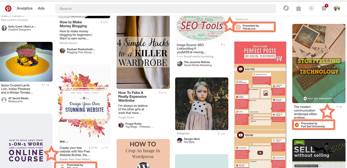 Pinterest Promoted Pins in the home feed