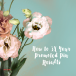 3X Your Pinterest Promoted Pins – Create and Use a Visitor Audience [Retargeting Ads]