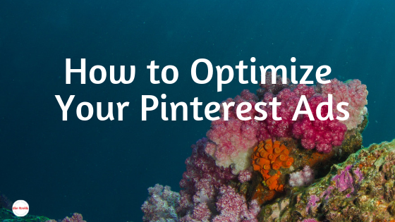 How to optimize your Pinterest ads. Don't settle for Promoted Pins that aren't working for you! Here's how to make the most of your dashboard to get the best deal on Promoted Pins.